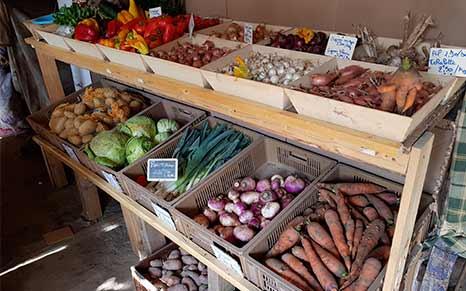 Legumes locaux Saint Amand