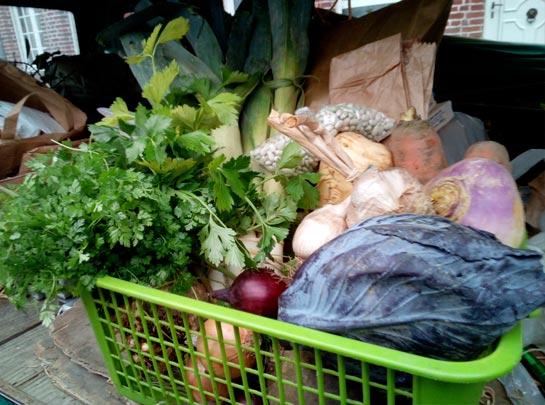 Panier de legumes 10 euros