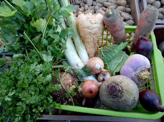 Panier de legumes a 5 euros