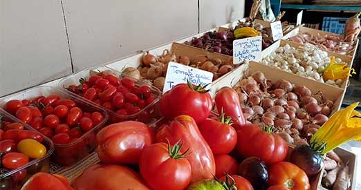 Producteur de legumes locaux